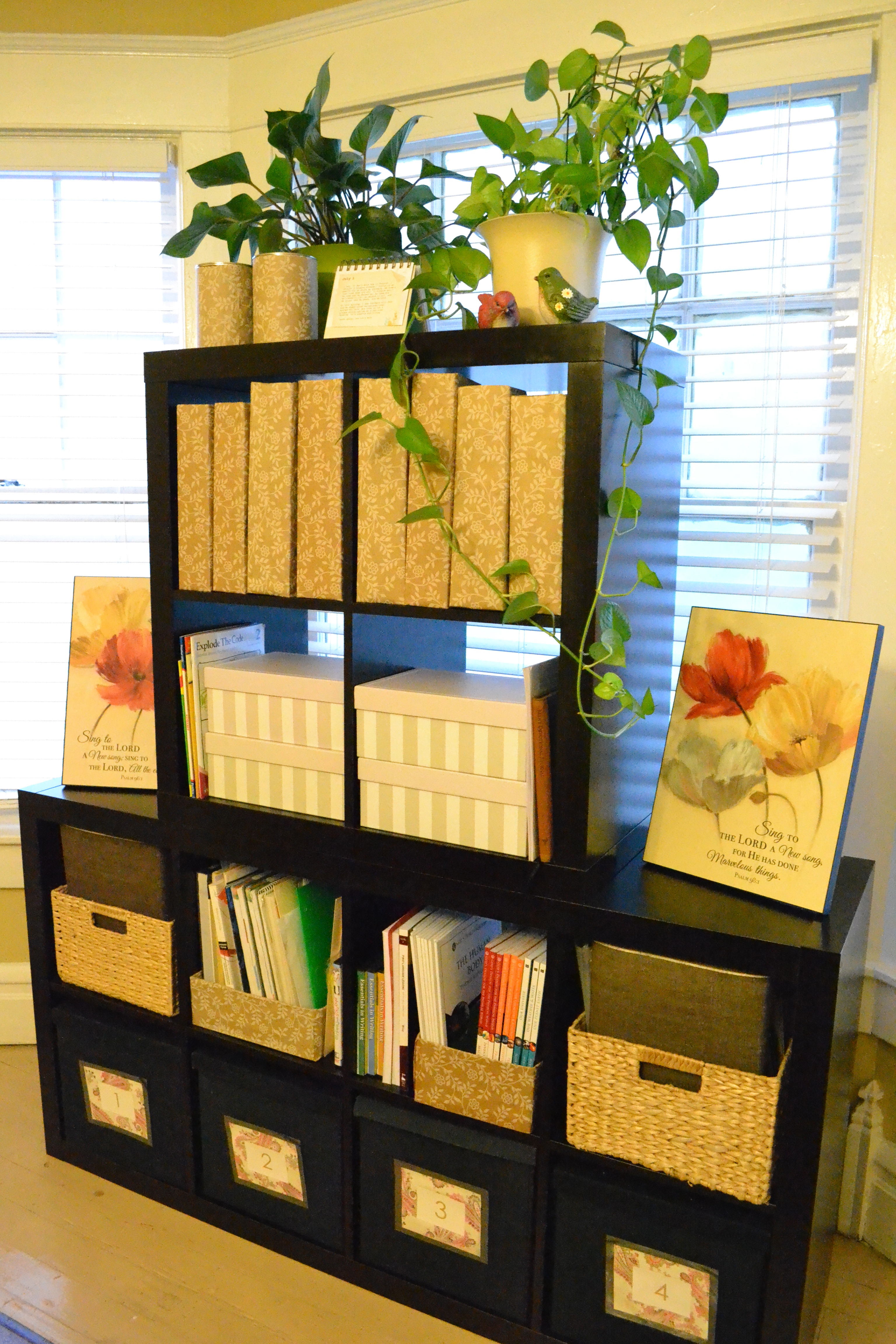 black ikea expedit bookcase filled with books before window