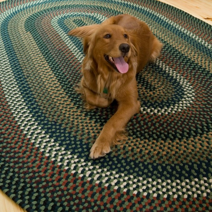 Charming Multicolor Braided Rugs In Big Sized For Floor Decor Ideas