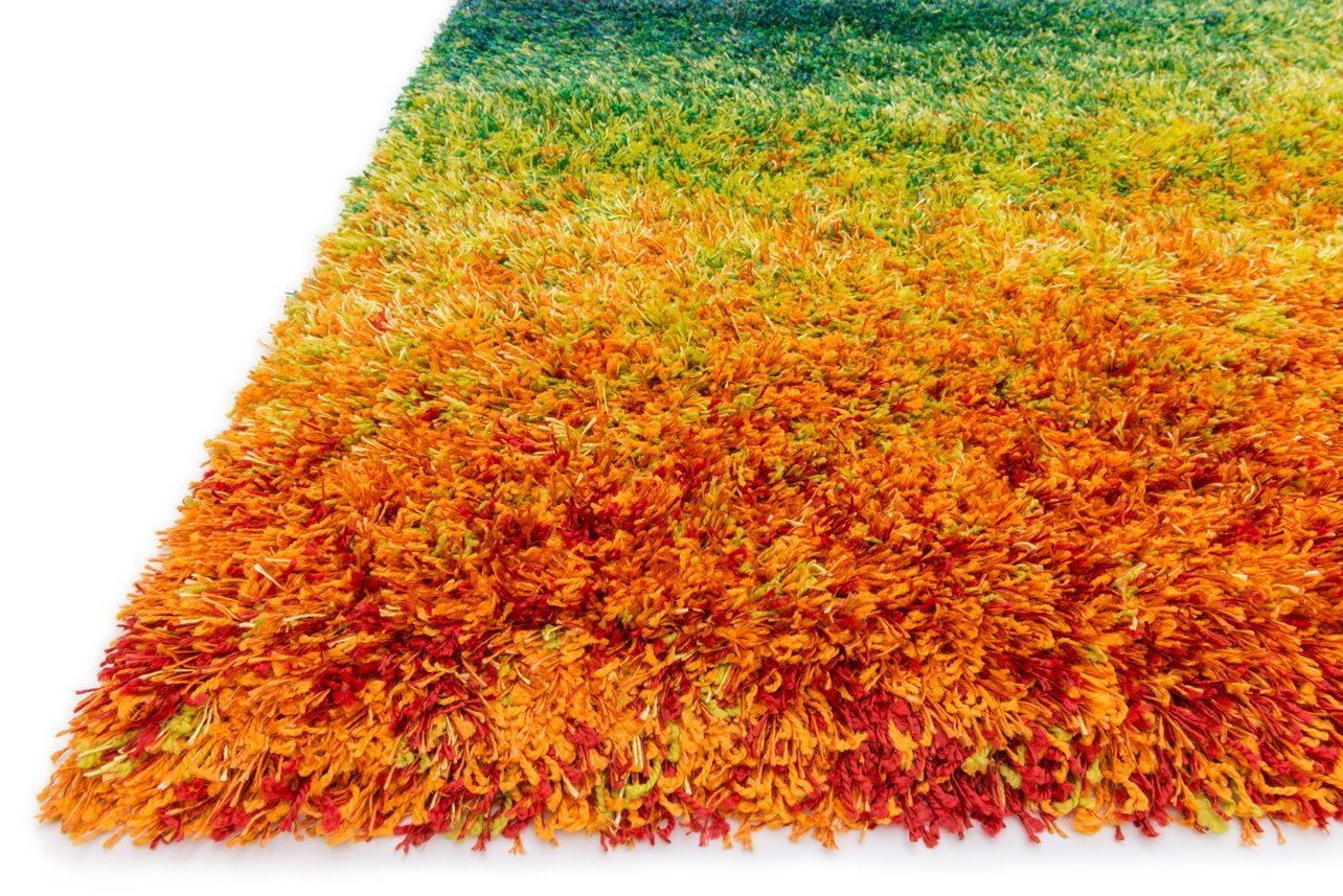 Colorful Shag Rugs for floor decor ideas