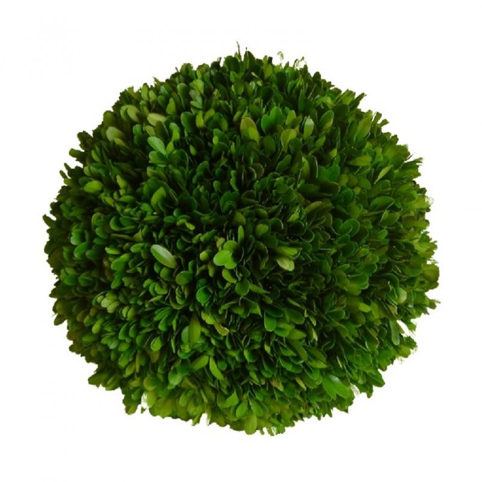 How To Make A Preserved Boxwood Wreath Topiary