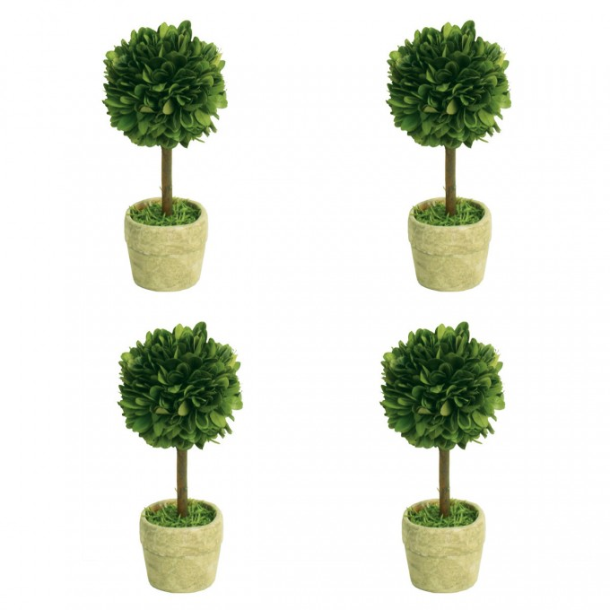 Preserved Boxwood Mini Topiary Set For Garden Decor Ideas