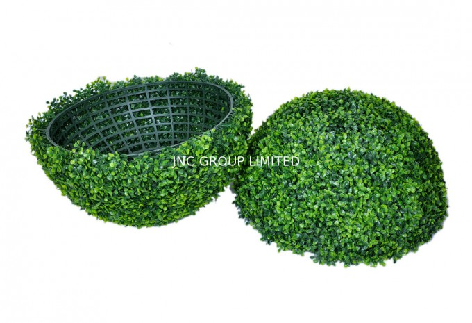 Preserved Boxwood With Ball Cut In Half Design For Home Accessories Ideas