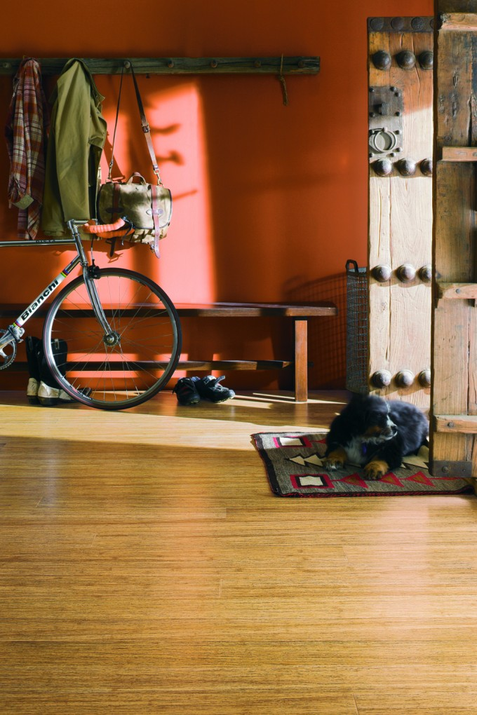 Teragren Flooring Matched With Orange Wall And Rustic Door For Home Interior Design Ideas