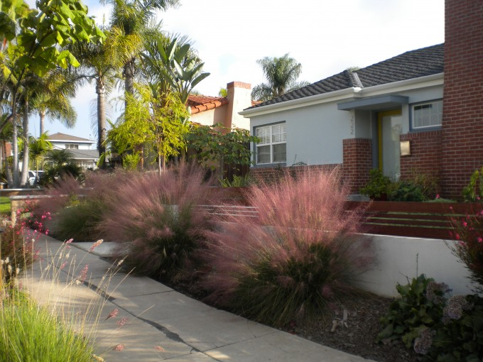 Awesome Front Gate With Pink Muhly Grass And Walkway Ideas
