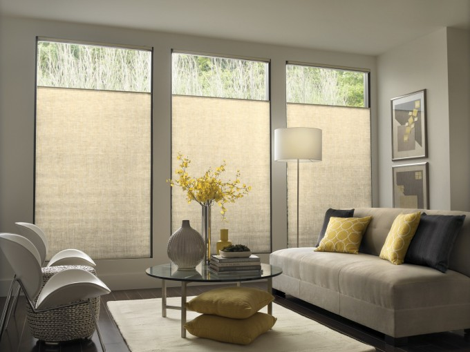 Chic Glass Window With Levolor Cellular Shades On White Wall Matched With Espresso Wooden Floor Plus Dining Table Set And Rug For Living Room Decor Ideas