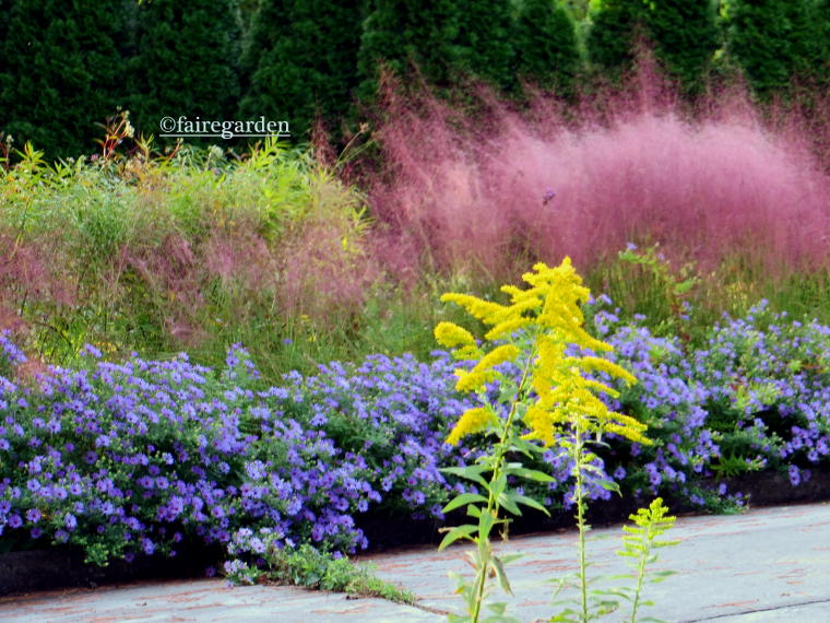 pretty pink muhly grass and lovely purple flowers for awesome landscaping decoration ideas