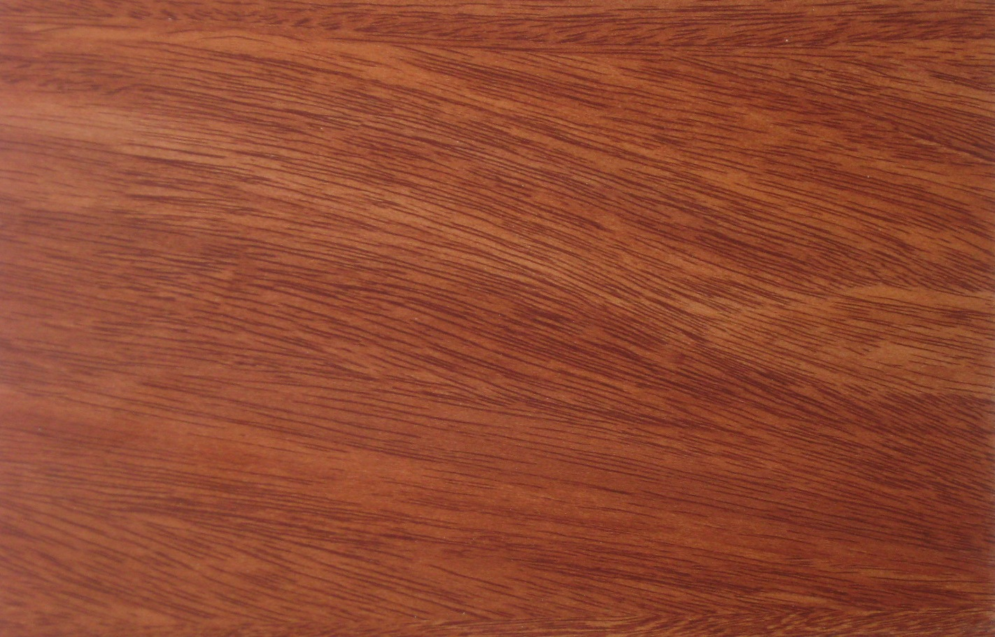 red beech wood stain by Konecto for flooring ideas
