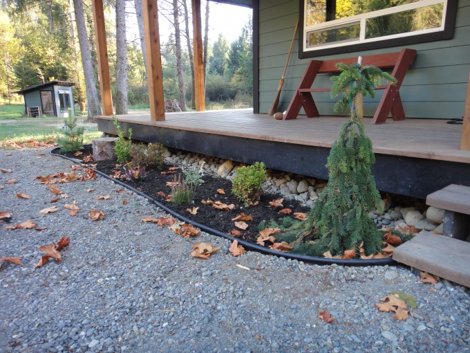 Wonderful Landscaping With Weeping Norway Spruce For Home Exterior Design Ideas