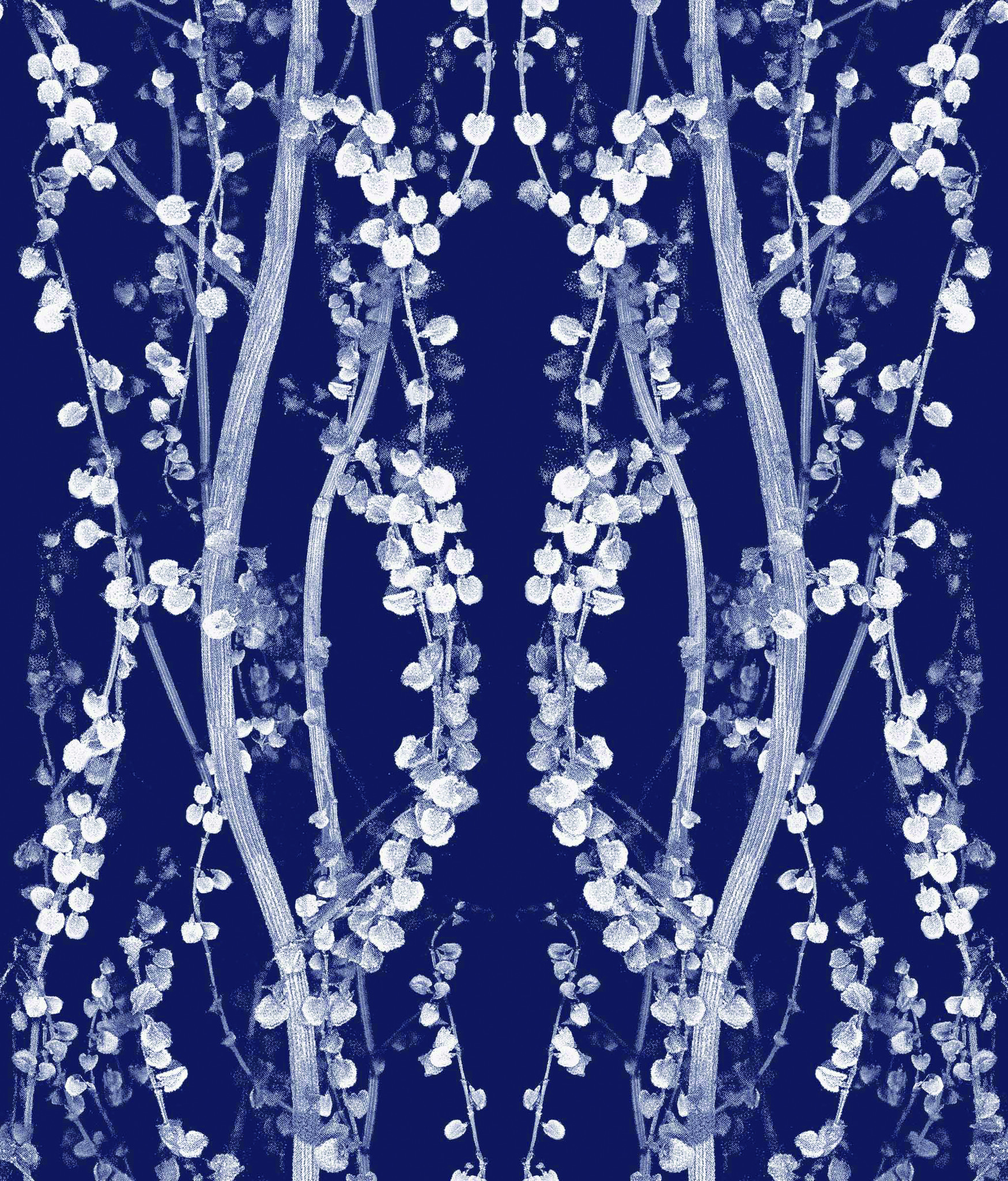 Branches Self Adhesive Wallpaper in Mystery Blue design by tempaper wallpaper for pretty wall decor ideas
