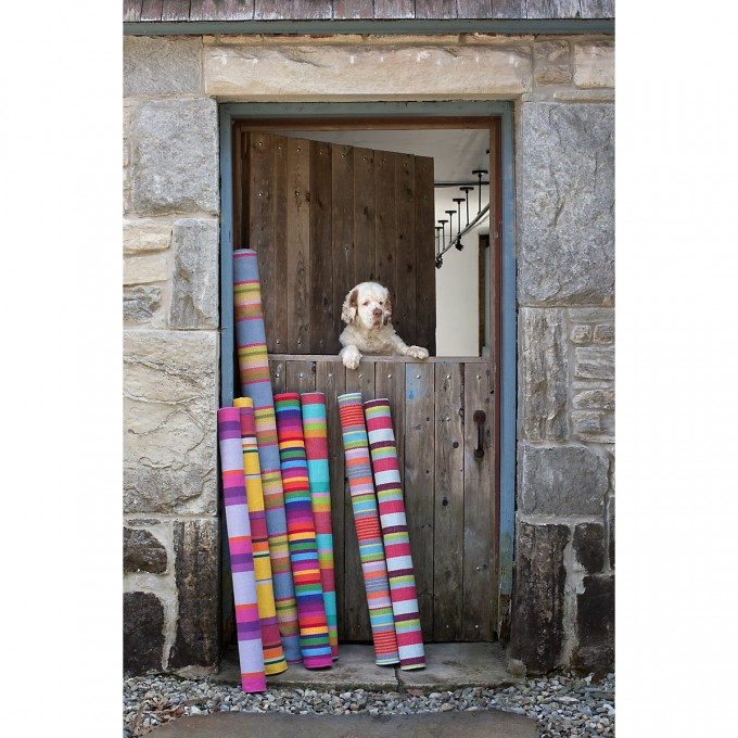 Charming Dash And Albert Rugs For Floor Decor Ideas