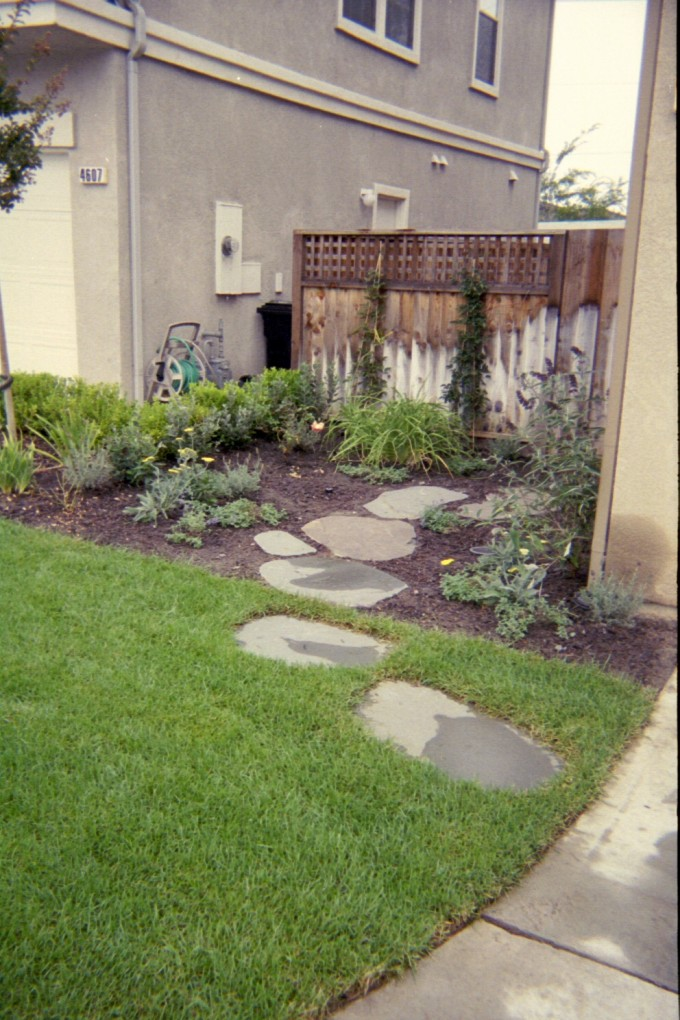 Charming Dymondia Margaretae With Stepping Stone For Landscaping Ideas