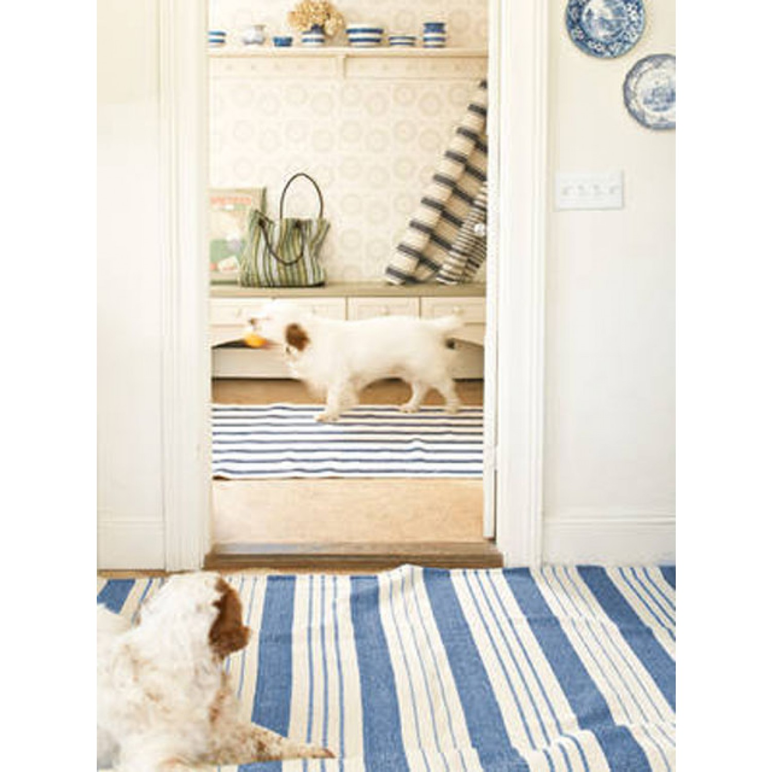 cool blue white stripped Dash And Albert Rugs on wooden floor matched with white wall for living room decor ideas
