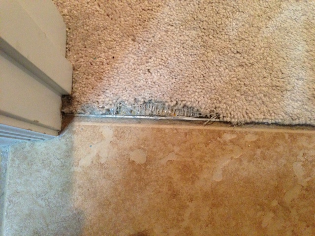 edging between tile and rug fusing schluter strip for flooring ideas