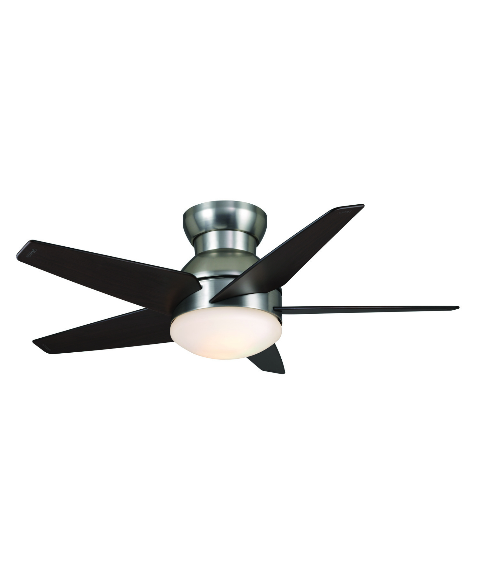 stylish Casablanca Ceiling Fans in five black blade slinger with single light for charming ceiling decor ideas